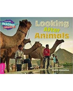 Looking After Animals Pink B Band (Cambridge Reading Adventures)